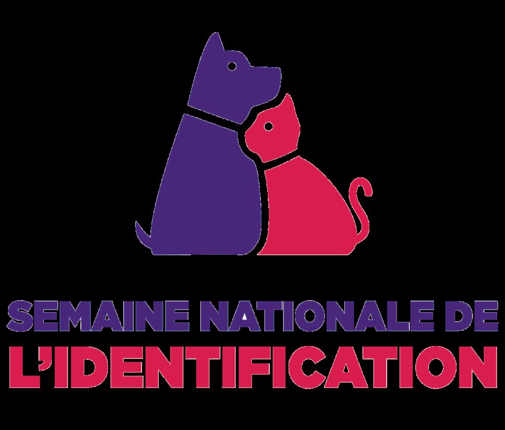 13 – Semaine Identifiaction