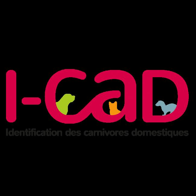 12 – I-cad
