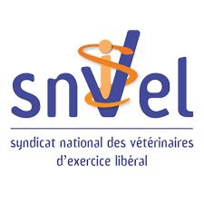 13 – SNVEL